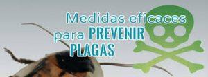 Control de plagas en comunidades de propietarios