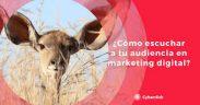 el marketing digital es escuchar